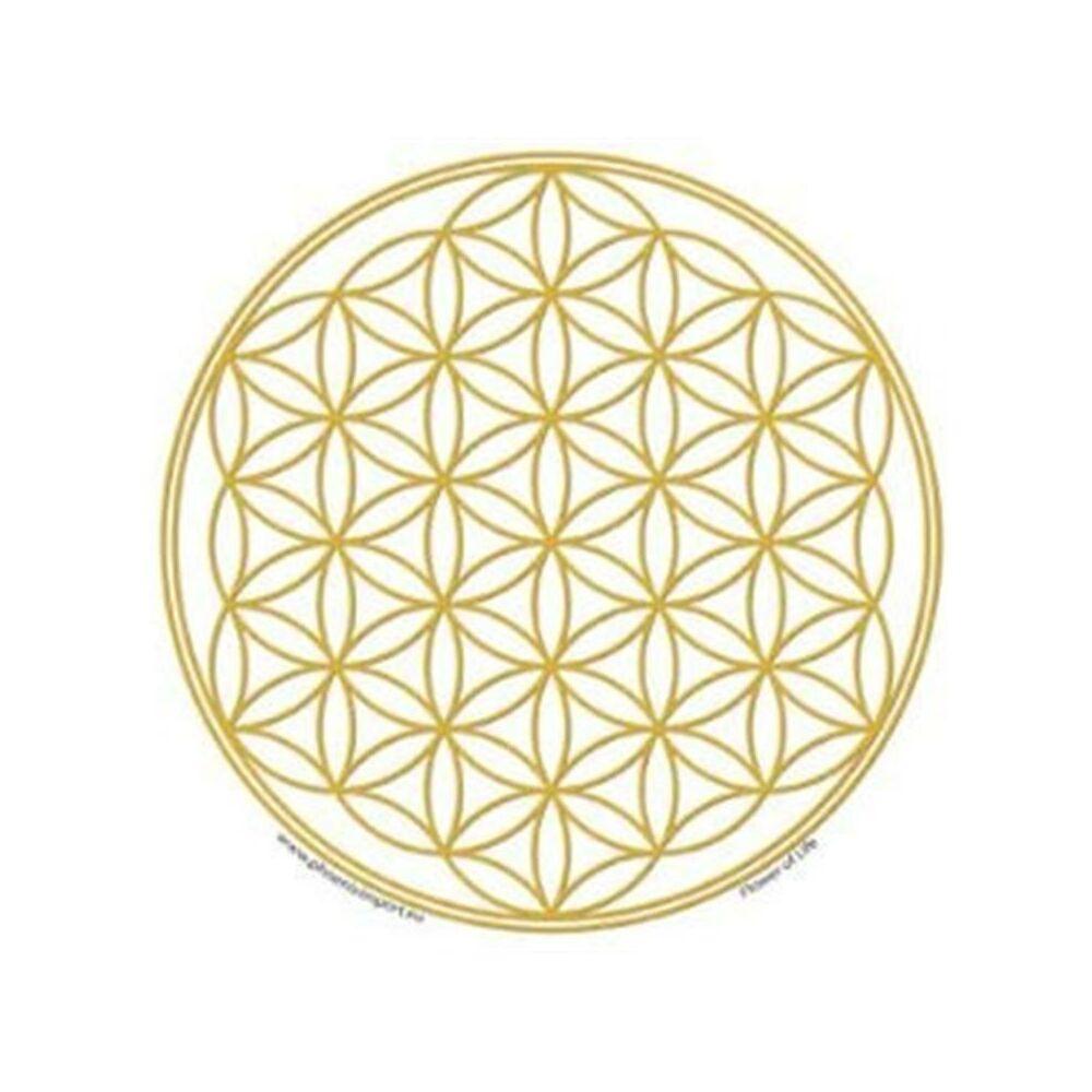 Ablak matrica -arany - élet virága