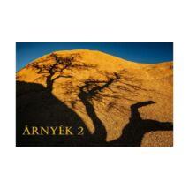 Az Árnyék 2 - letölthető online meditációs tanfolyam - hanganyag mp3