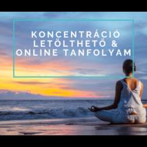 Koncentráció - letölthető & online tanfolyam